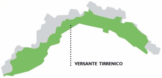 mappa basilico